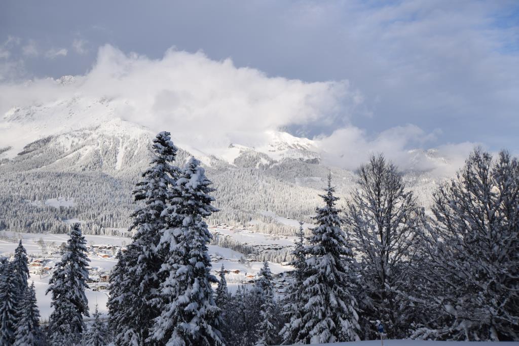 Winterimpression3